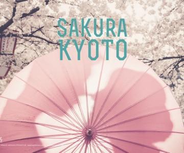 KYOTO SAKURA : TINA & SAM