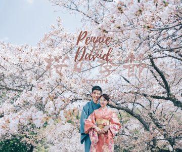 四月的京都櫻花季